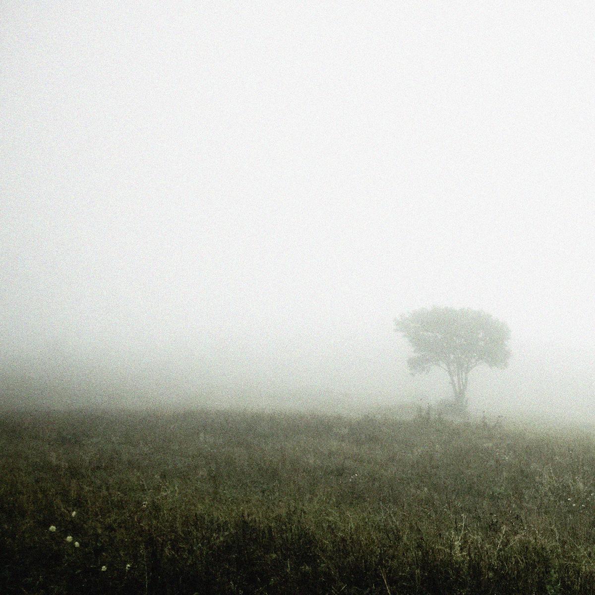 Mist tijdens wandeling
